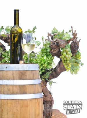 Spanish Wine & Grapes